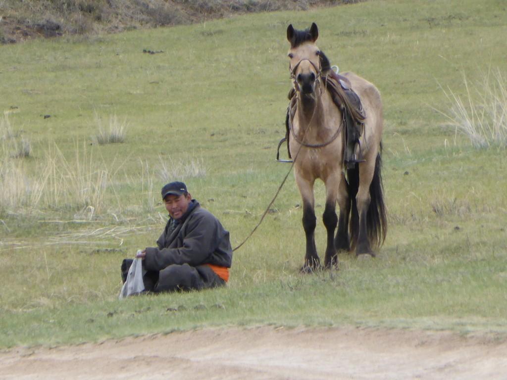 Pferdehirte