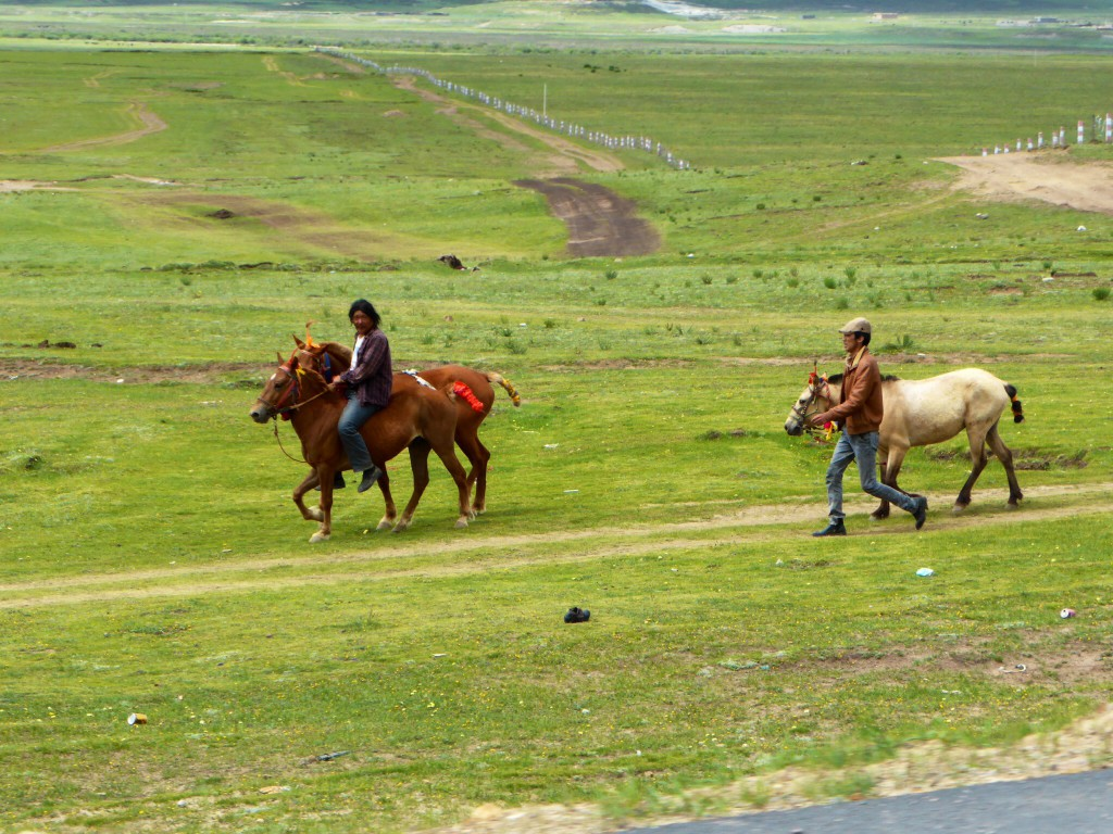 Tibetische Reiter