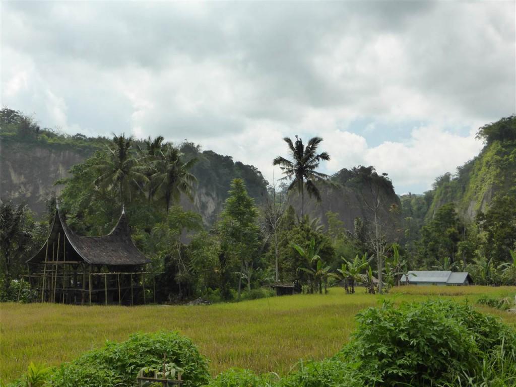 Landschaft um Bukkitinggi
