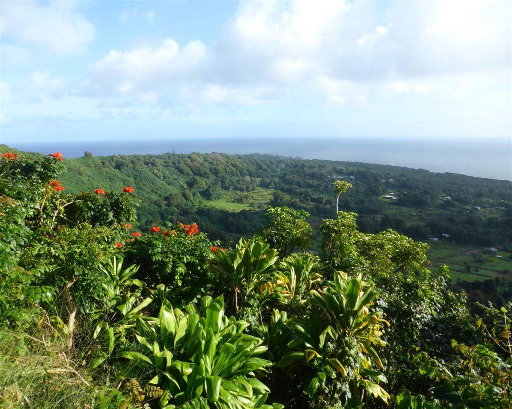 Mauis schöne Ostküste
