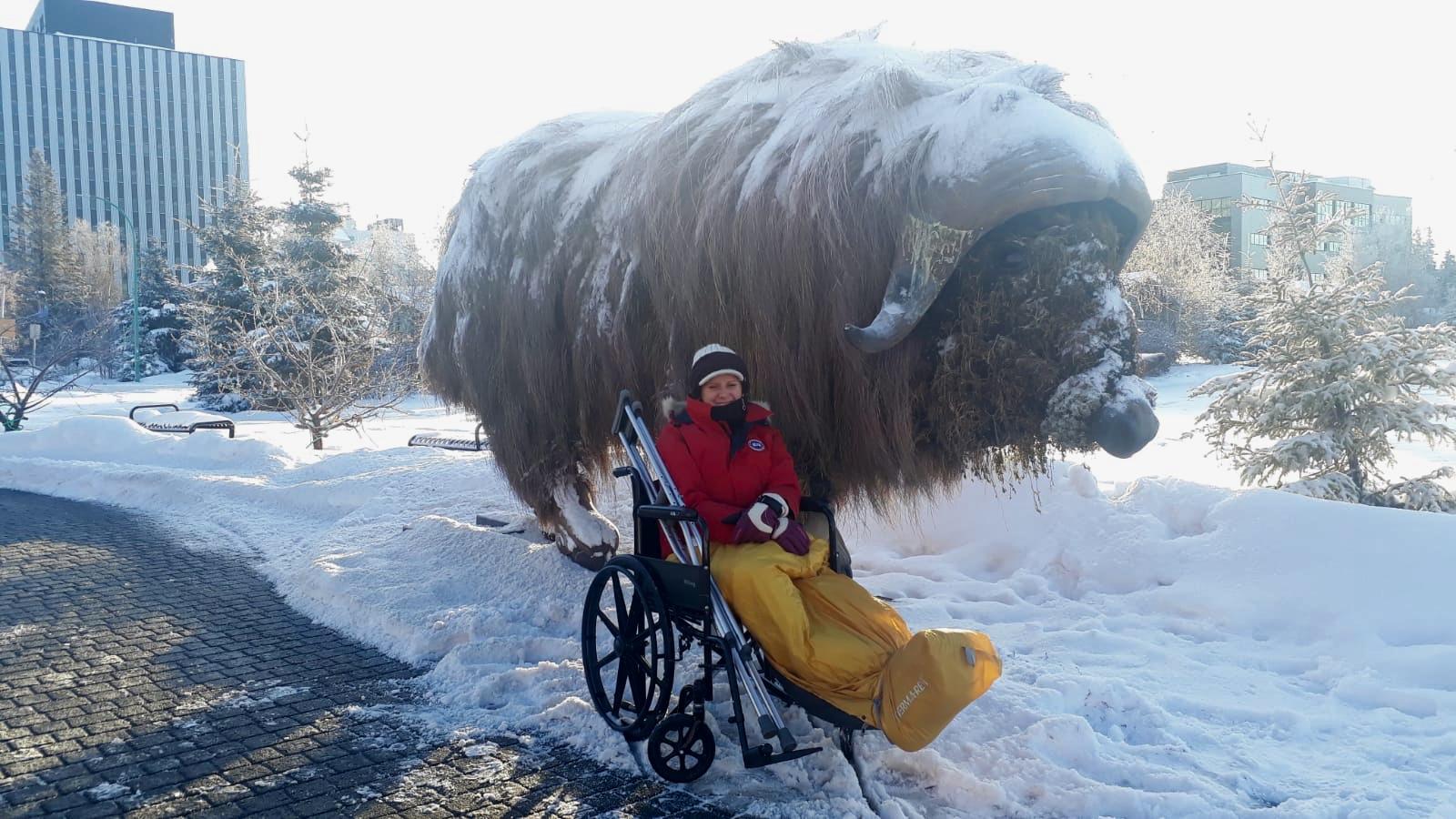 Biene_Rollstuhl_Buffalo-Yellowknife