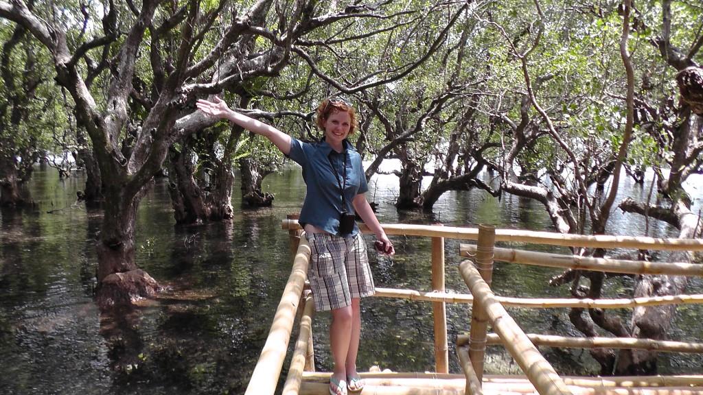 Mangroven vor Camiguin