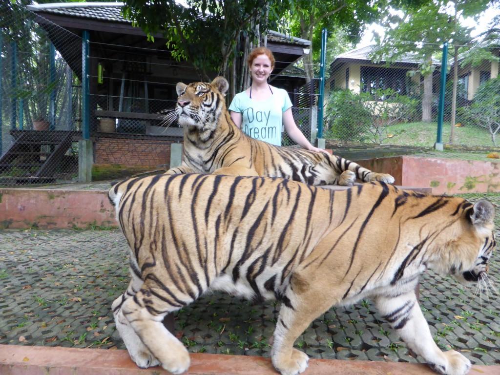 Die Königin der Tiger ;)
