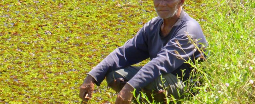 Tolle Begegnungen unterwegs in Thailand